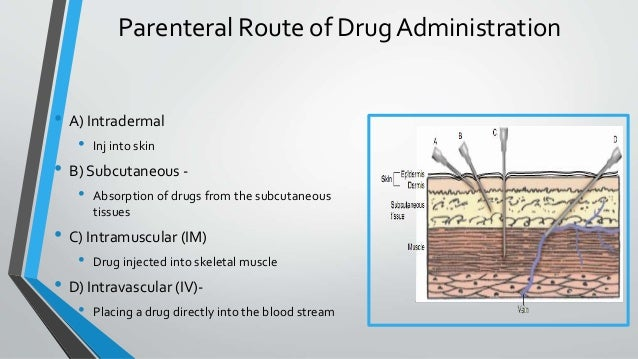 routes of drug administration Us food and drug administration 10903 new hampshire avenue silver spring, md 20993 1-888-info-fda (1-888-463-6332) contact fda.