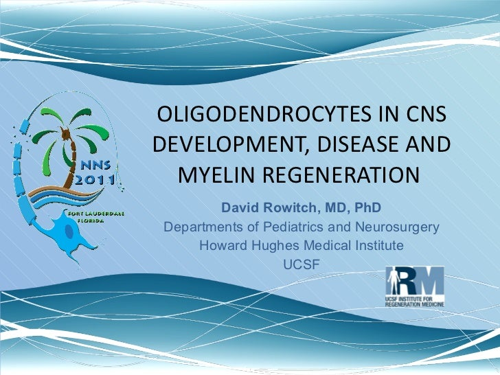 OLIGODENDROCYTES IN CNS DEVELOPMENT, DISEASE AND MYELIN REGENERATION  David Rowitch, MD, PhD Departments of Pediatrics and...