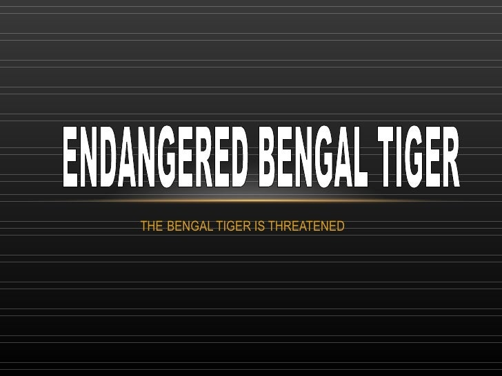 THE   BENGAL TIGER IS THREATENED ENDANGERED BENGAL TIGER
