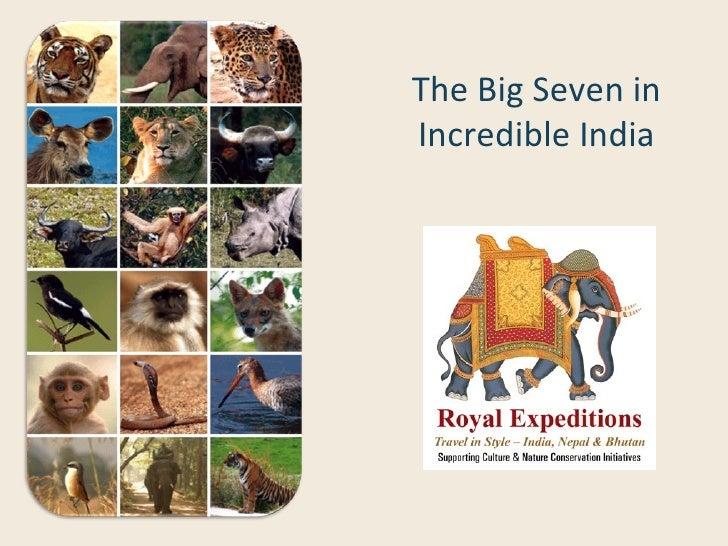 The Big Seven inIncredible India