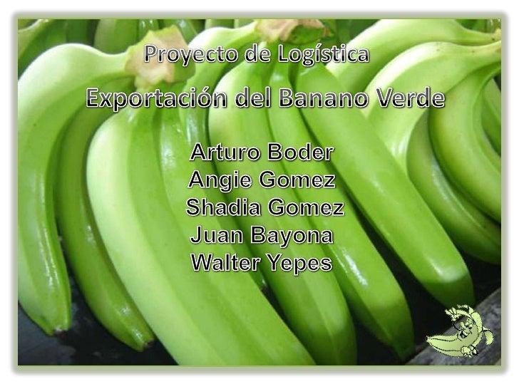 Clasificación científica•   Posiblemente el banano es la planta cultivada mas    antigua del mundo. Hace mas de tres mil a...