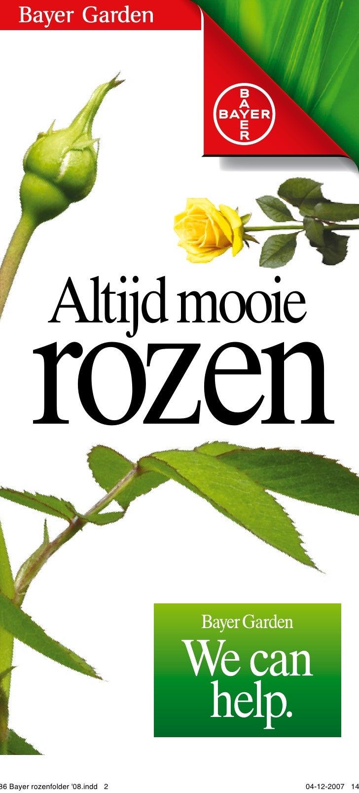 Altijd mooie         rozen  86 Bayer rozenfolder '08.indd 2   04-12-2007 14