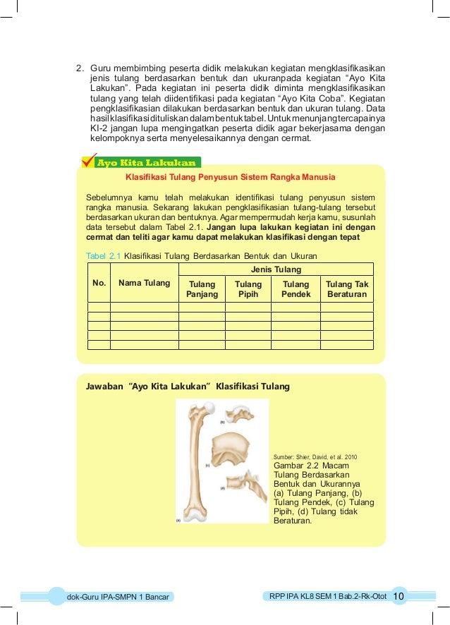 2. Guru membimbing peserta didik melakukan kegiatan mengklasifikasikan  jenis tulang berdasarkan bentuk dan ukuranpada keg...