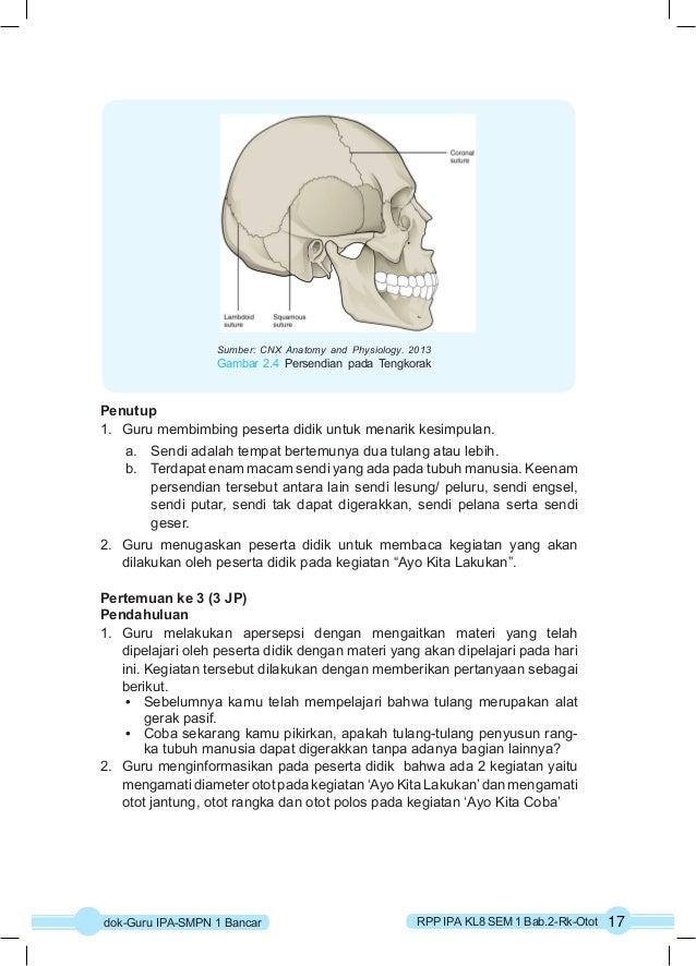 Sumber: CNX Anatomy and Physiology. 2013  Gambar 2.4 Persendian pada Tengkorak  Penutup  1. Guru membimbing peserta didik ...