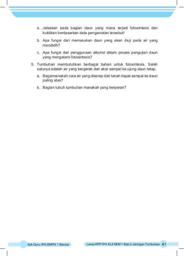 Rpp Ipa K 13 Kelas 8 Semester 1 Bab3 Taringan Tumbuhan
