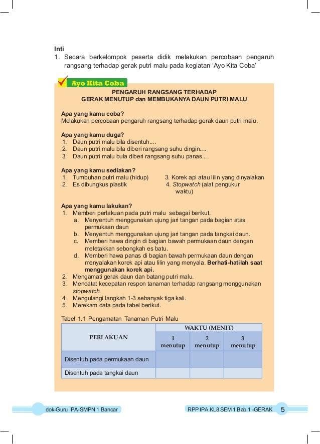 Rpp Ipa Kurikulum 2013 Kelas 8 Semester 1