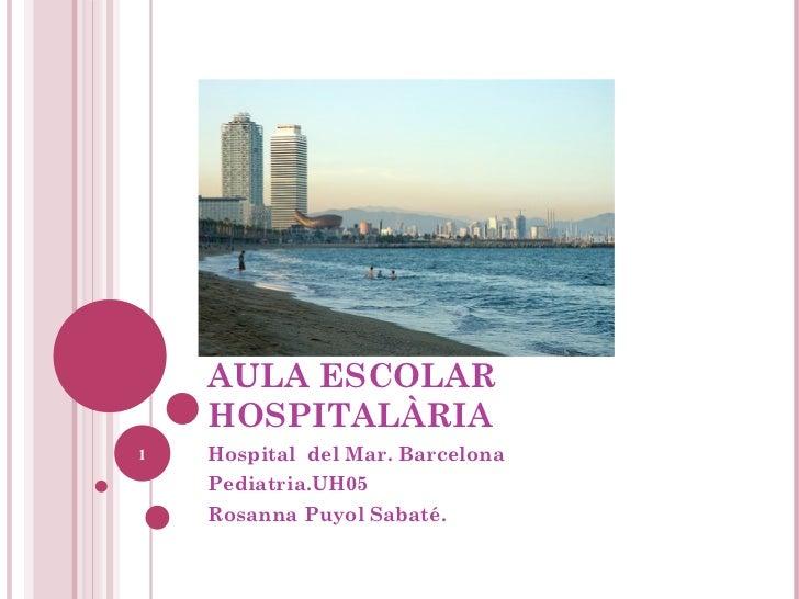 AULA ESCOLAR HOSPITALÀRIA Hospital  del Mar. Barcelona Pediatria.UH05 Rosanna Puyol Sabaté.