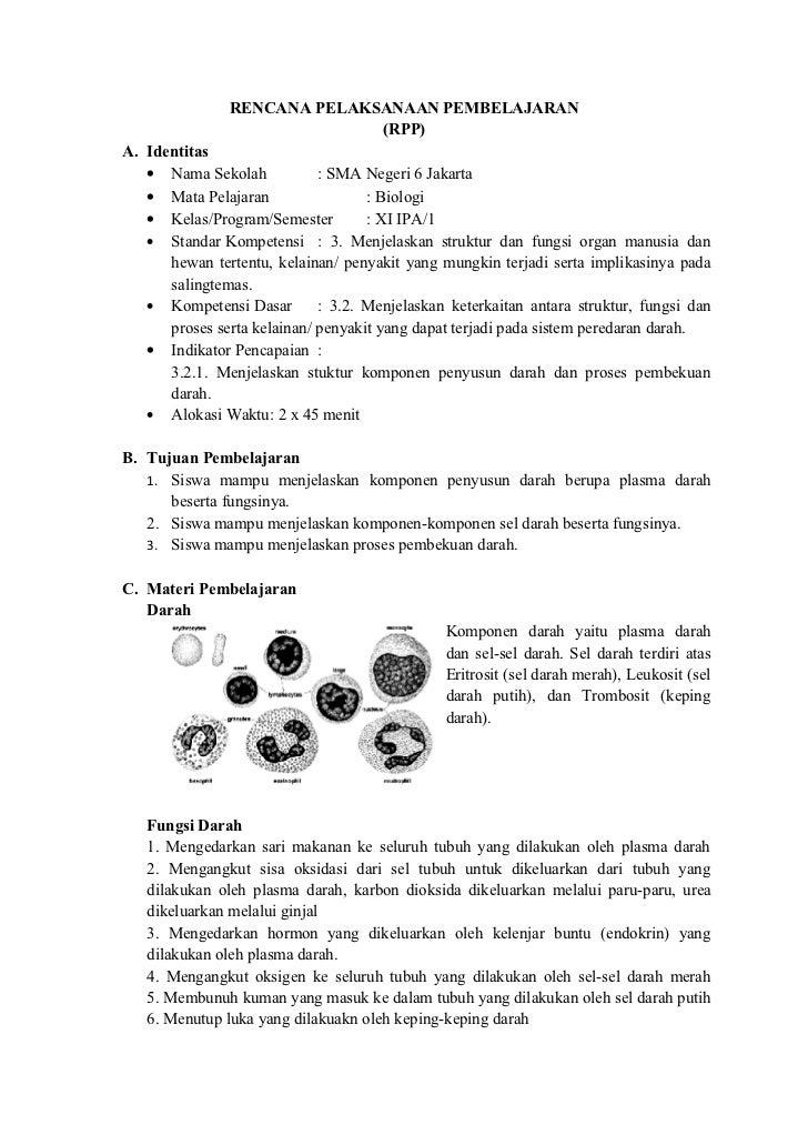 Rpp sistem sirkulasi pertemuan 1