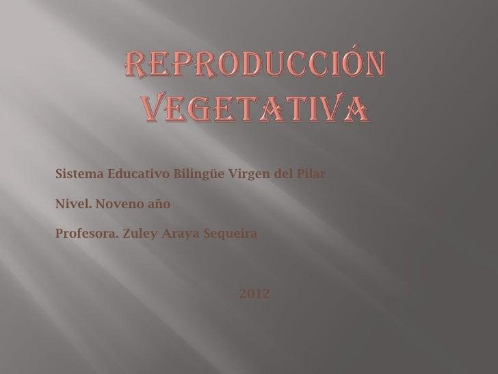 Sistema Educativo Bilingüe Virgen del PilarNivel. Noveno añoProfesora. Zuley Araya Sequeira                             2012
