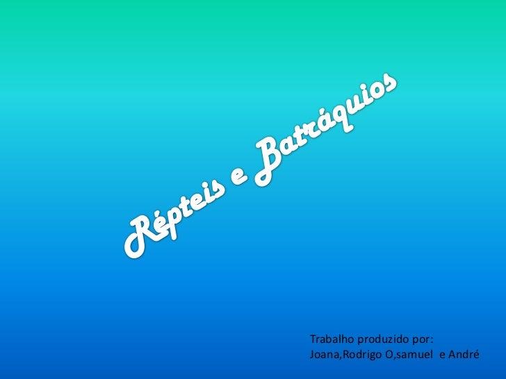 Trabalho produzido por:Joana,Rodrigo O,samuel e André