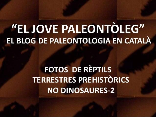 """""""EL JOVE PALEONTÒLEG""""EL BLOG DE PALEONTOLOGIA EN CATALÀFOTOS DE RÈPTILSTERRESTRES PREHISTÒRICSNO DINOSAURES-2"""