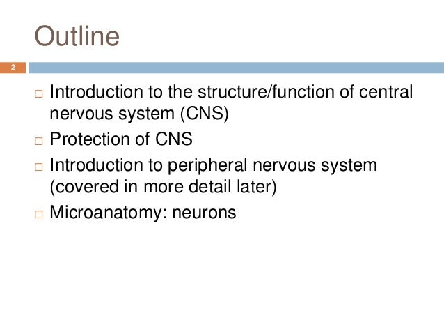 outline of the nervous system The nervous system is the part of an animal that coordinates its actions by transmitting signals to and from different parts of its body the nervous system detects environmental changes that impact the body, then works in tandem with the endocrine system to respond to such events nervous tissue first arose in wormlike organisms about 550 to.