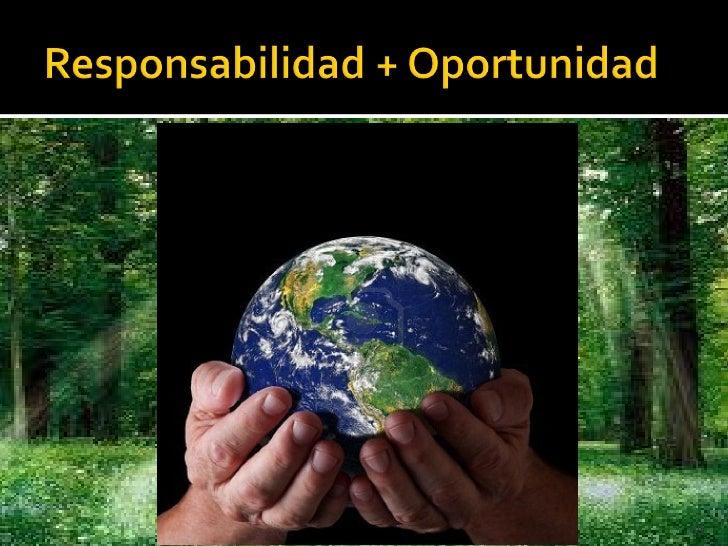RSE  Industria Forestal
