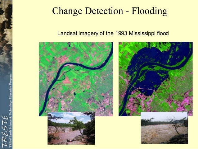 change detection remote sensing thesis Methods and techniques for forest change detection and growth estimation using academic dissertation in remote sensing department of surveying for the thesis, methods and techniques were developed for detecting change automatically and estimating forest.