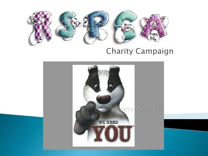 Charity Campaign