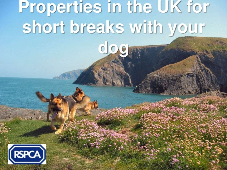 Properties in the UK forshort breaks with your          dog