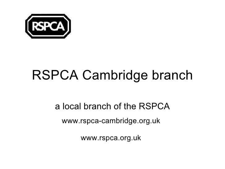 RSPCA Cambridge branch a local branch of the RSPCA www.rspca-cambridge.org.uk www.rspca.org.uk