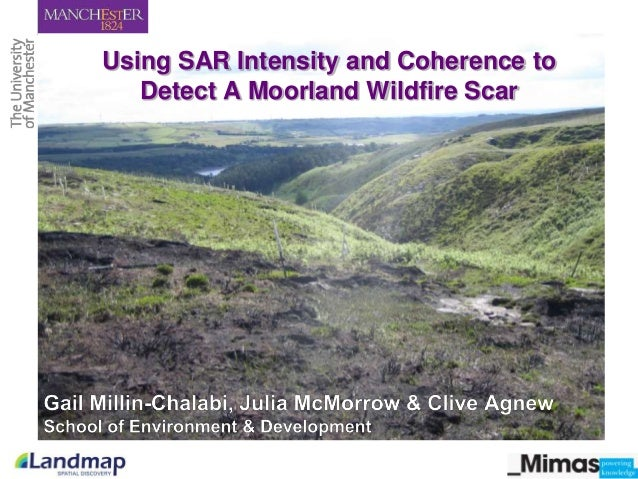 Using SAR Intensity and Coherence to Detect A Moorland Wildfire Scar