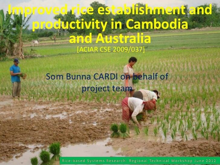 Improved rice establishment and   productivity in Cambodia        and Australia            [ACIAR CSE 2009/037]     Som Bu...