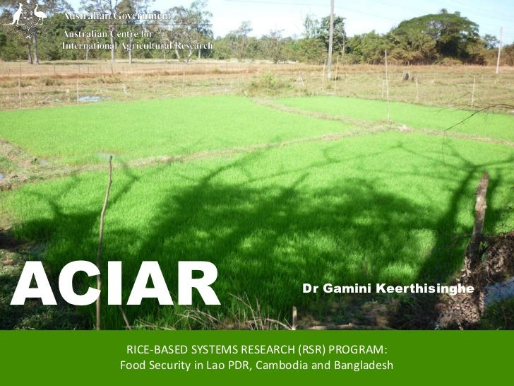 ACIAR                             Dr Gamini Keerthisinghe   RICE-BASED SYSTEMS RESEARCH (RSR) PROGRAM:  Food Security in L...