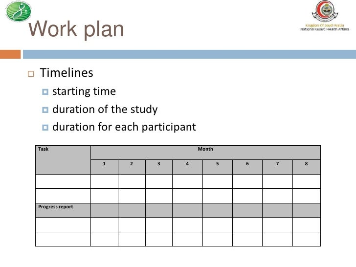 Work plan in research proposal – Maria Picks