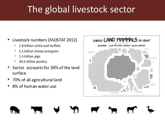The global livestock sector: Trends and health implications Slide 3