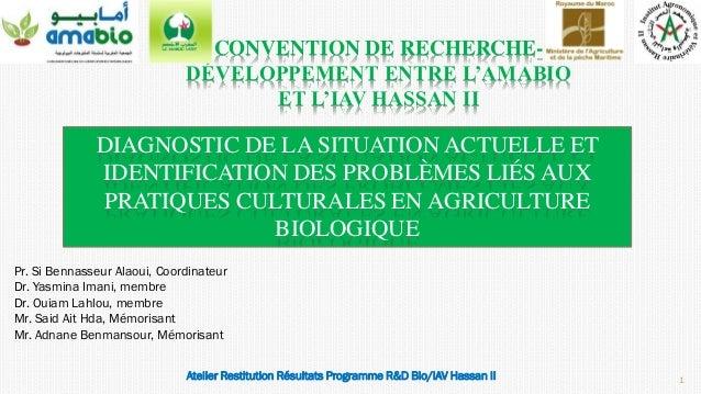 DIAGNOSTIC DE LA SITUATION ACTUELLE ET IDENTIFICATION DES PROBLÈMES LIÉS AUX PRATIQUES CULTURALES EN AGRICULTURE BIOLOGIQU...