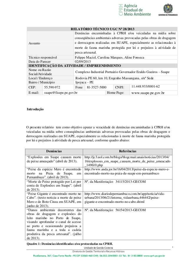Unidade de Gestão Costeira Diretoria de Gestão Territorial e Recursos Hídricos 1 RELATÓRIO TÉCNICO UGC No 28/2013 Assunto ...