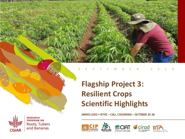 S E P T E M B E R 2 0 1 8 Flagship Project 3: Resilient Crops Scientific Highlights JAMES LEGG • ISTRC – CALI, COLOMBIA – ...