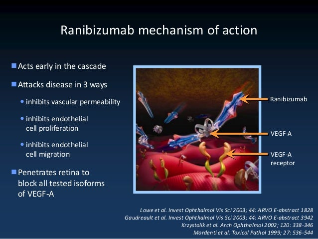 Sustained Benefits from Ranibizumab for Macular Edema ...