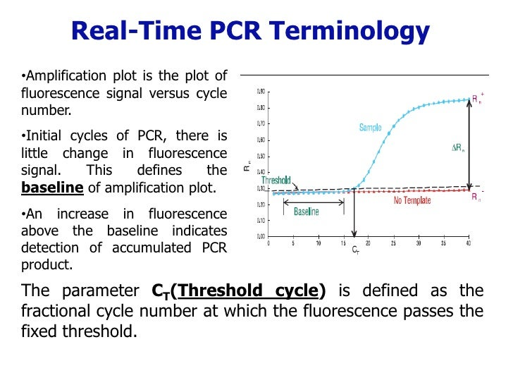 how to read ct excitation curve