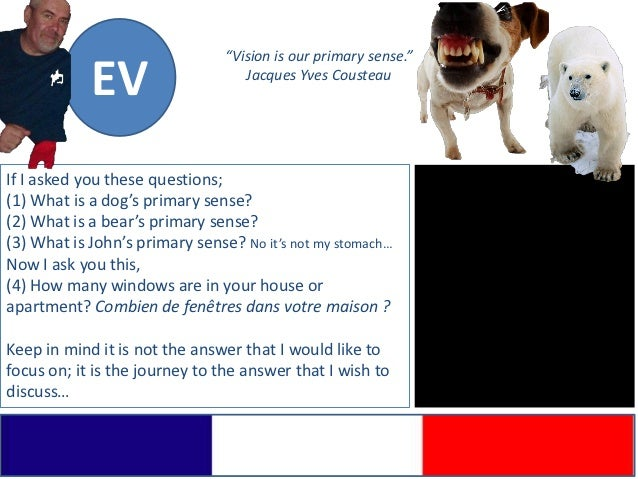 """""""Vision is our primary sense.""""            EV                     Jacques Yves CousteauIf I asked you these questions;(1) W..."""
