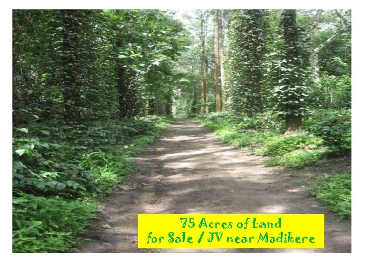 75 Acres of Land for Sale / JV near Madikere<br />
