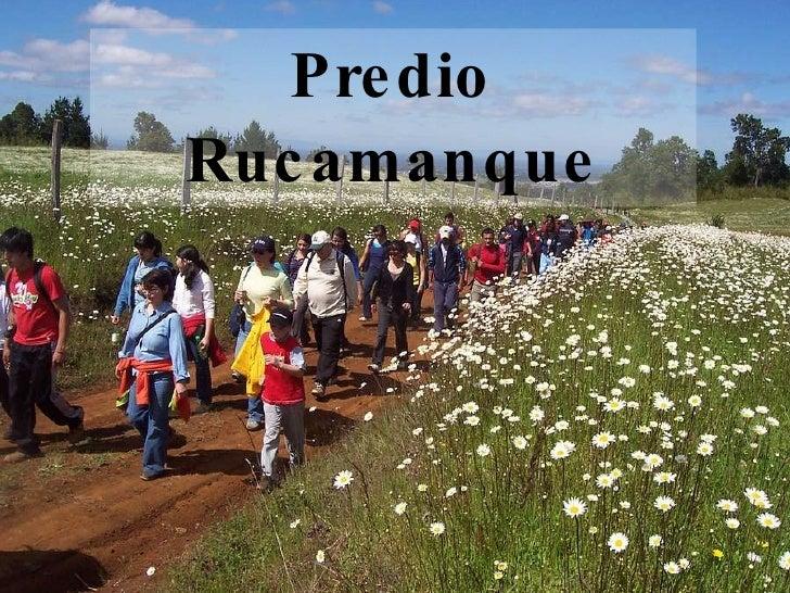 Predio Rucamanque
