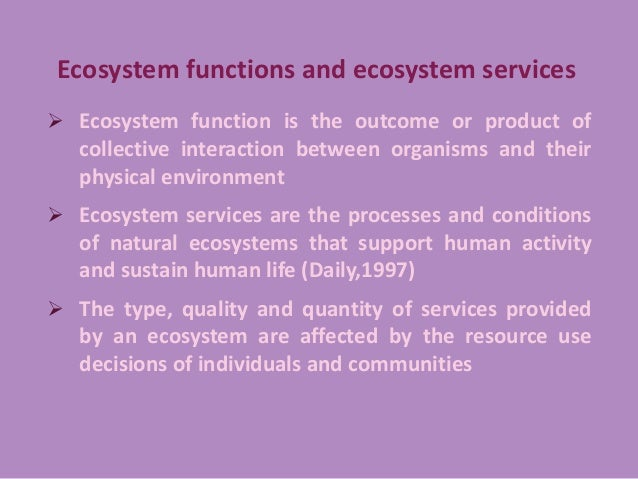 an analysis of the reform in the spirit of conservation Critical analysis of the forest policy of bangladesh: highlights on conservation and people's participation.