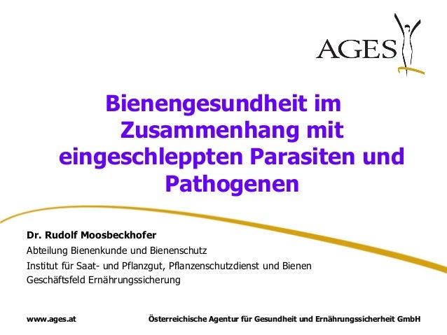 Österreichische Agentur für Gesundheit und Ernährungssicherheit GmbHwww.ages.at Bienengesundheit im Zusammenhang mit einge...