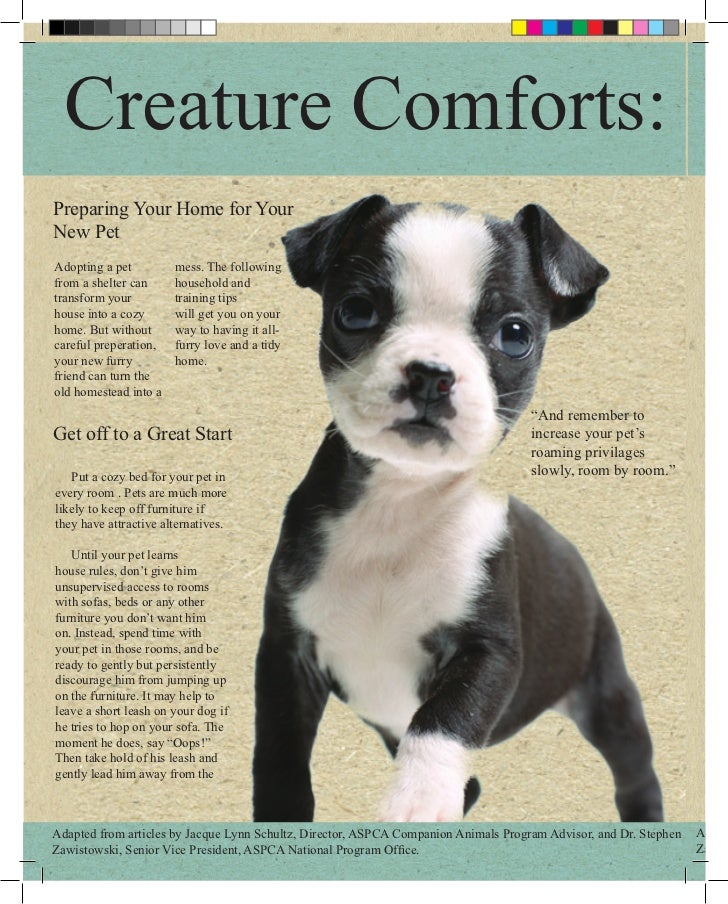 Creature Comforts:Preparing Your Home for YourNew PetAdopting a pet         mess. The followingfrom a shelter can     hous...