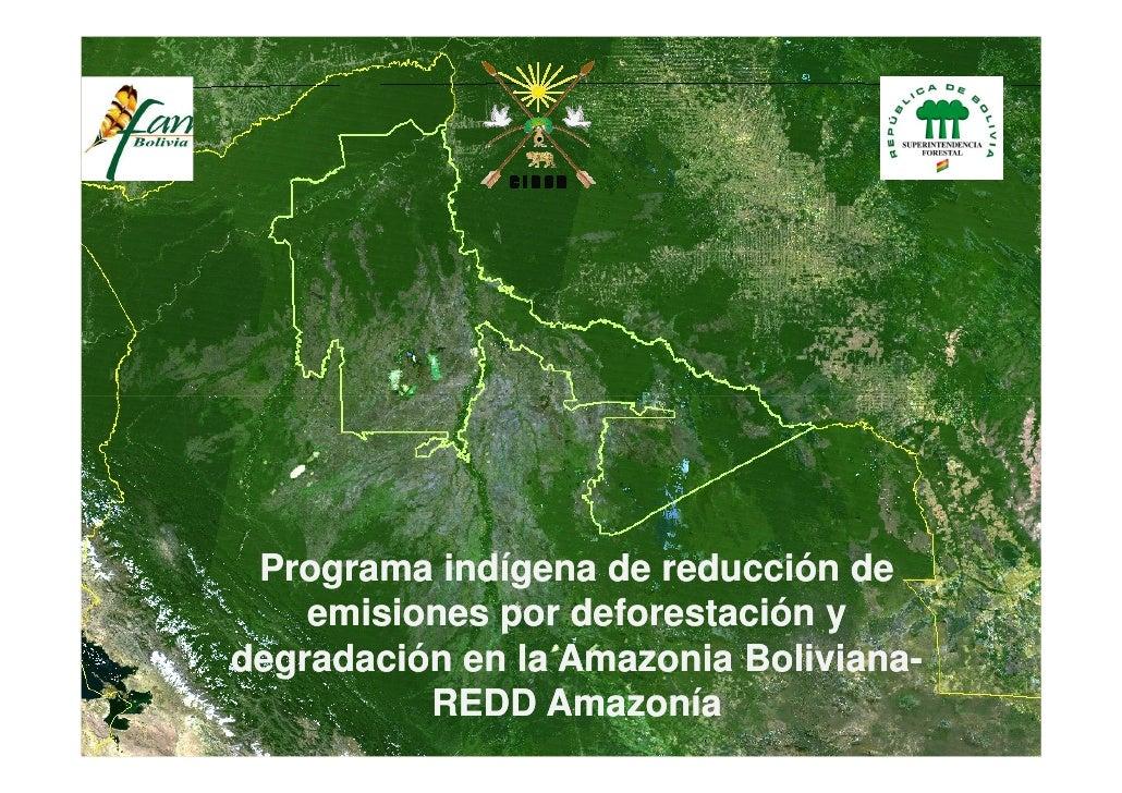 Programa indígena de reducción de     emisiones por deforestación y degradación en la Amazonia Boliviana-                 ...