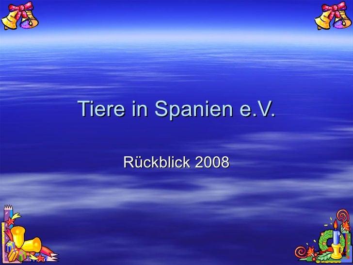 Tiere in Spanien e.V. Rückblick 2008