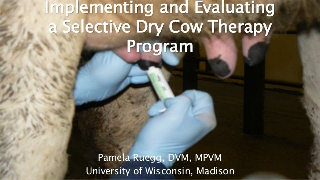 Copyright ©2017 Pamela L. Ruegg, all rights reserved Implementing and Evaluating a Selective Dry Cow Therapy Program Pamel...