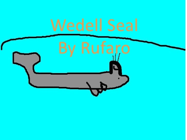Wedell SealBy Rufaro