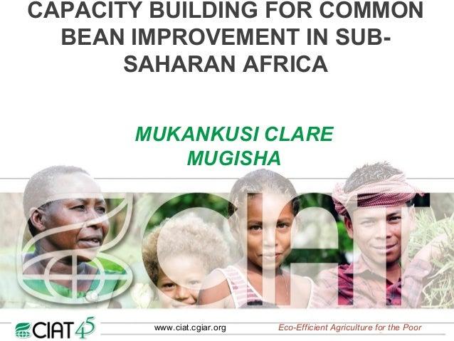 CAPACITY BUILDING FOR COMMON  BEAN IMPROVEMENT IN SUB-       SAHARAN AFRICA       MUKANKUSI CLARE          MUGISHA        ...