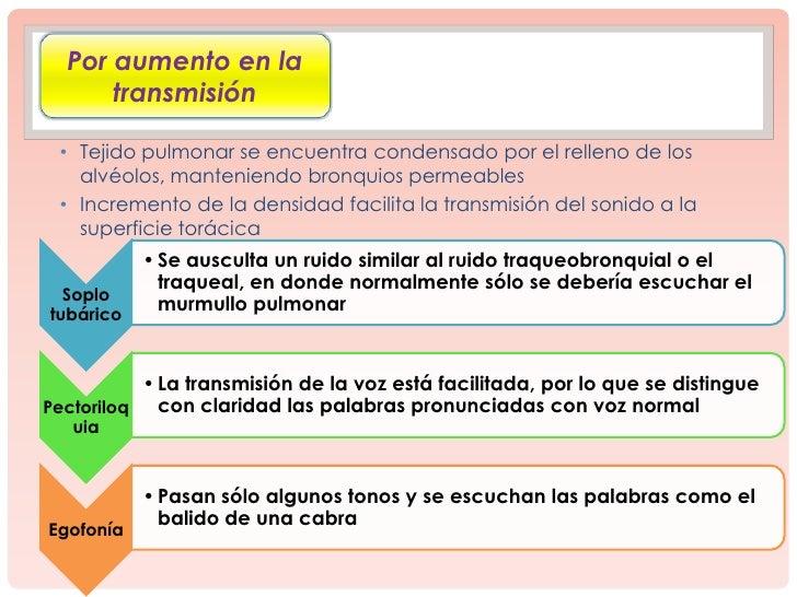 Ruidos Adventicios Respiratorios Slide 3