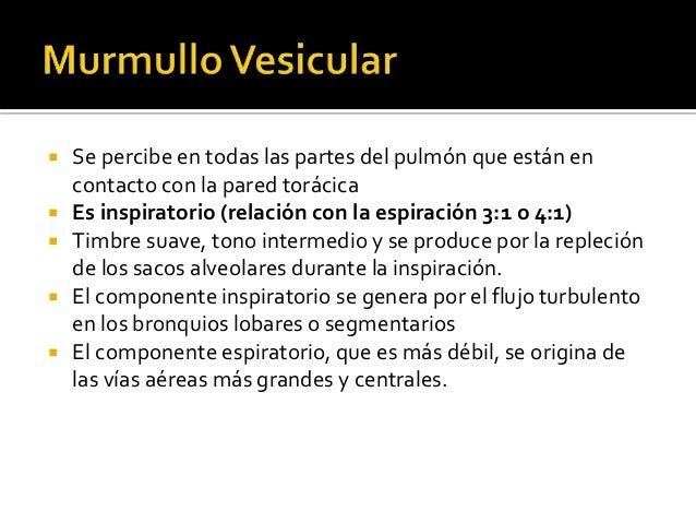    Alteraciones de la intensidad:     Aumento del murmullo vesicular: hiperventilación pulmonar      (respiración de Kus...