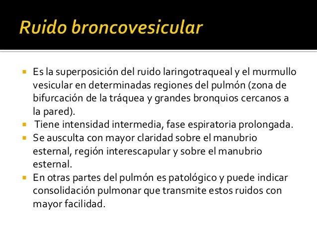    Los ruidos adventicios pueden diferenciarse    en:     Ruidos de origen bronquial o estertores.     Ruidos de origen...