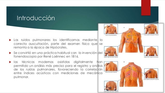 Ruidos respiratorios anormales Slide 2