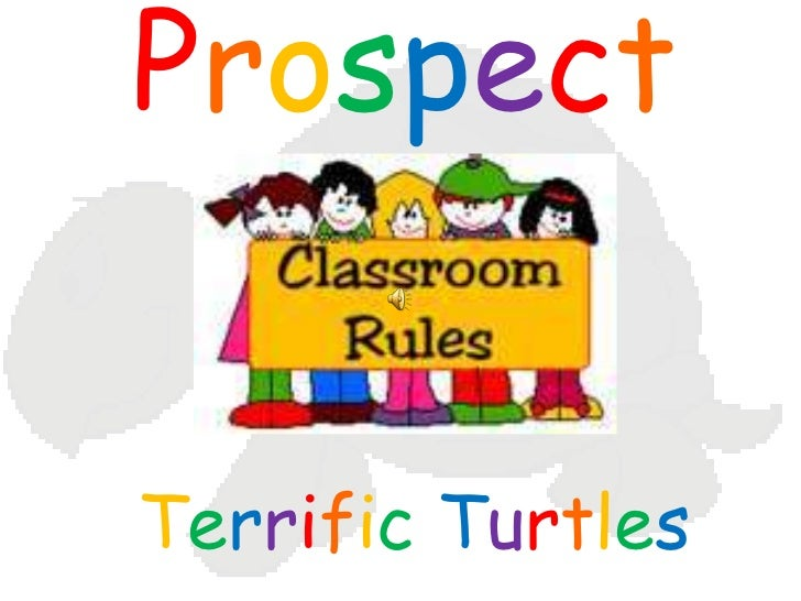 Prospect<br />TerrificTurtles<br />