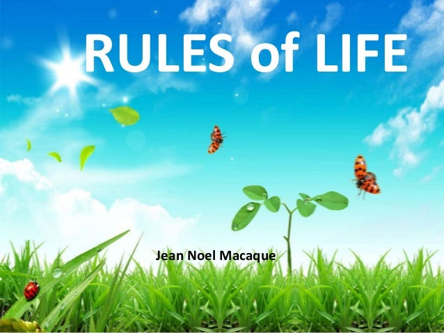 RULES of LIFE Jean Noel Macaque