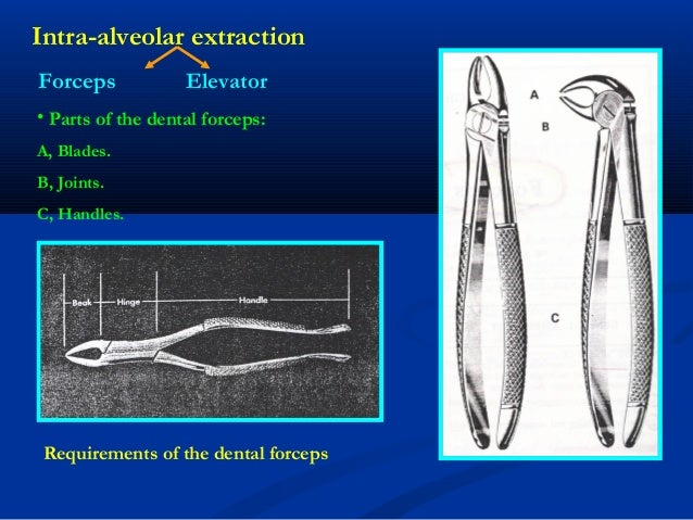 Rules Of Using Dental Forceps Amp Elevator