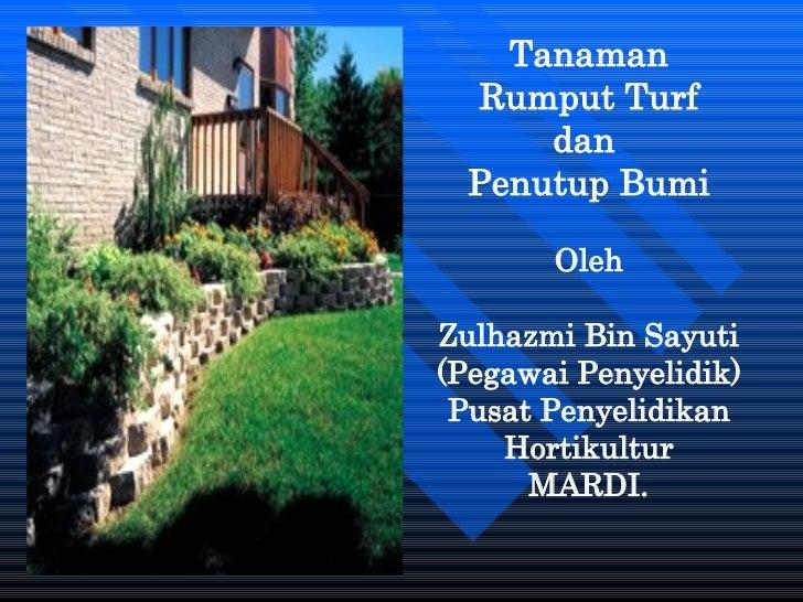 Tanaman Rumput Turf  dan  Penutup Bumi Oleh Zulhazmi Bin Sayuti (Pegawai Penyelidik) Pusat Penyelidikan Hortikultur MARDI.